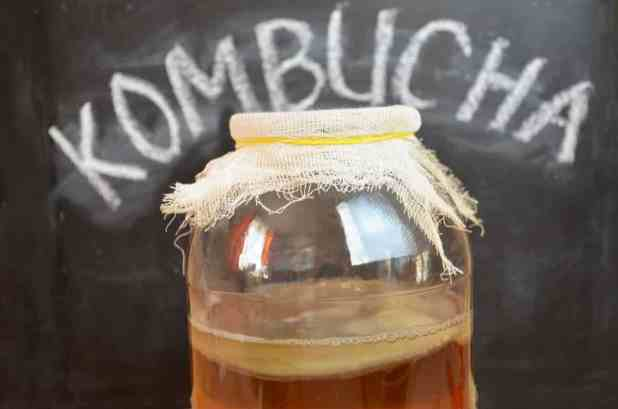 Amazing health benefits of Kombucha Tea 2