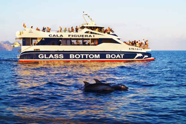 Glass Bottom boat trips in Mallorca