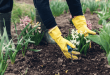 5 Fun Ways To Get Outdoors This Spring Season