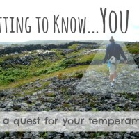 Getting to Know... You {Temperament Link-Up}