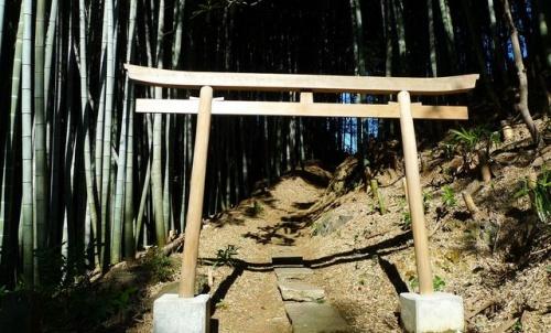 パワースポット  千葉 神社
