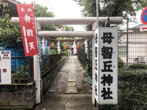 パワースポット 宮崎 神社