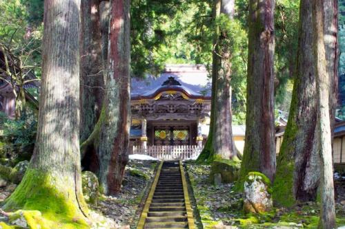 パワースポット 福井 神社