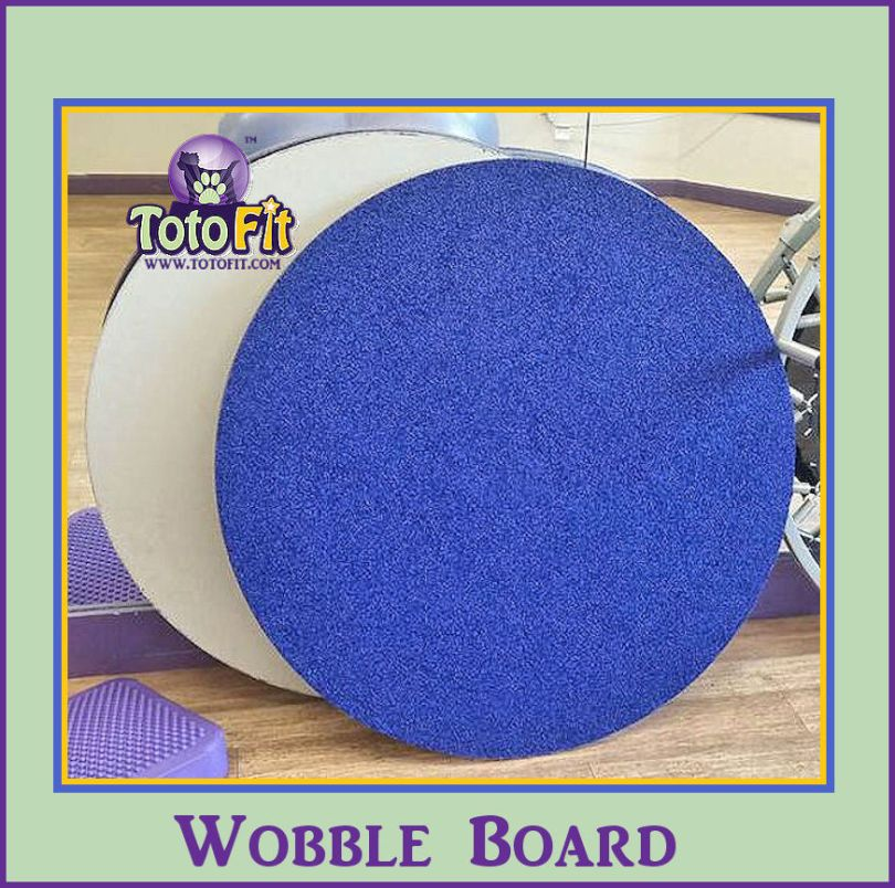 Wobble Board 1