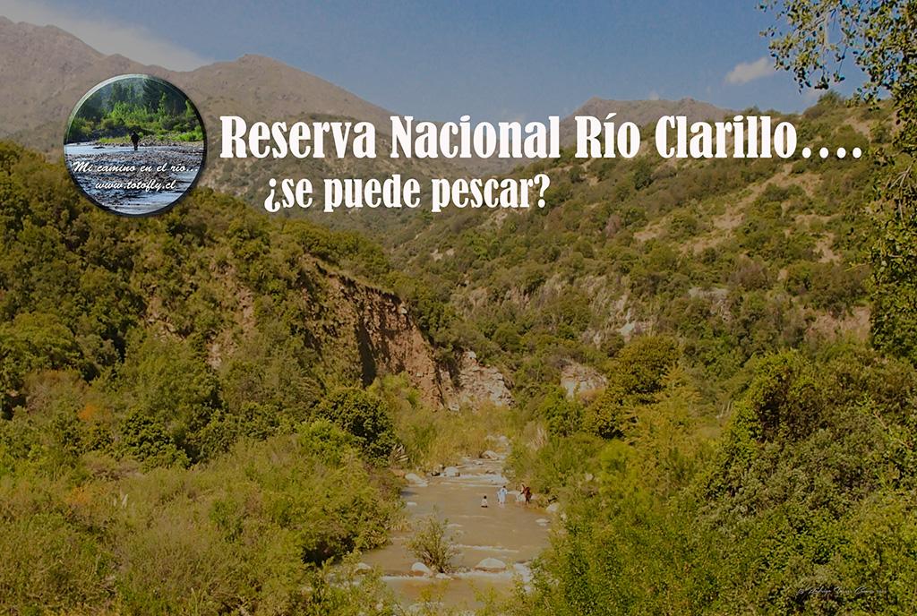 Río Clarillo - Portada
