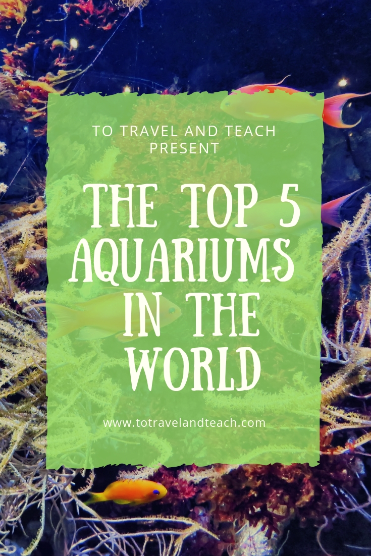 top aquariums in the world