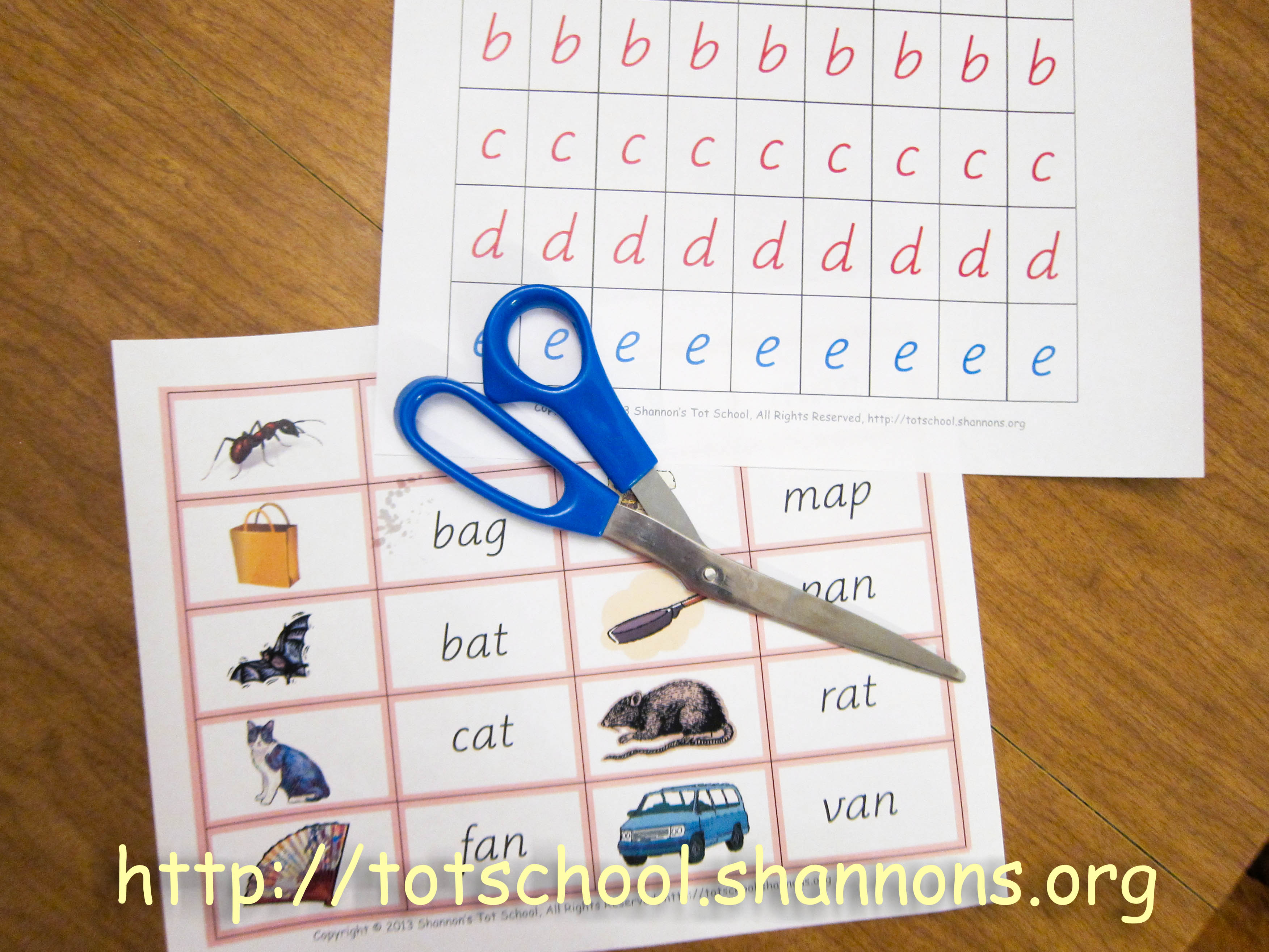 Building Words With The Movable Alphabet Shannon S Tot