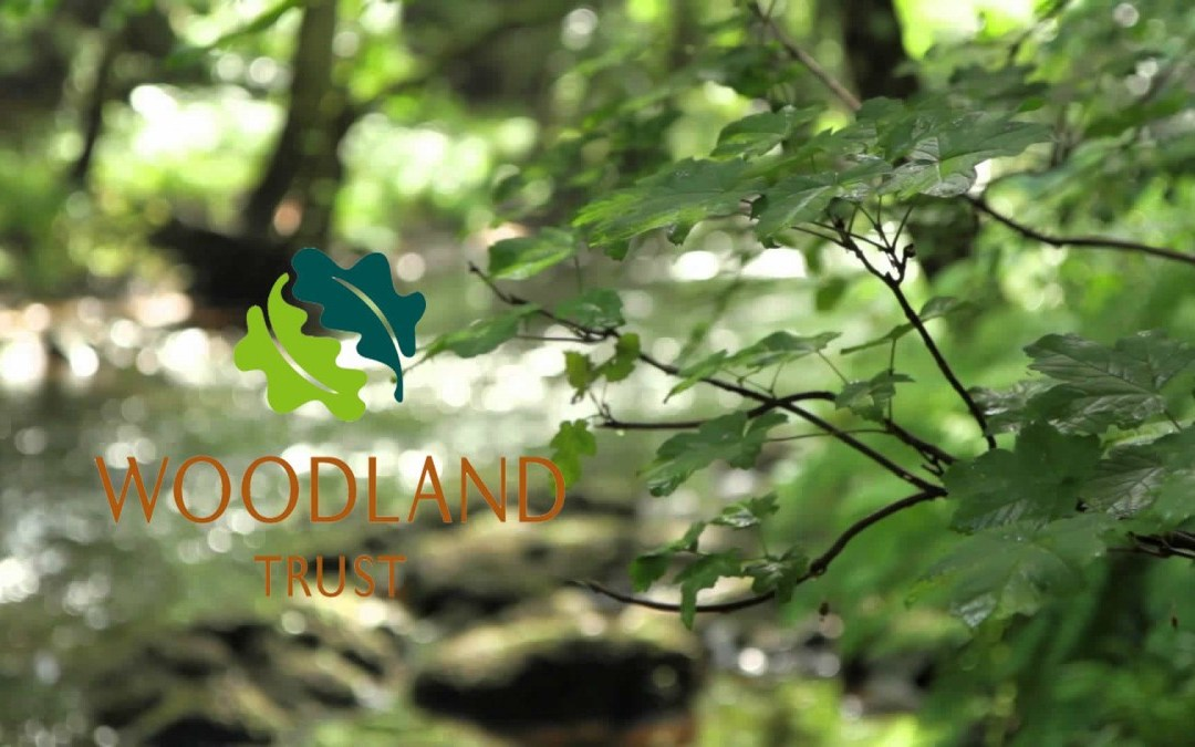 The Woodland Trust – Mother's Union