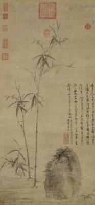 la-souplesse-gagne-sur-la-rigidite-Tai Chi