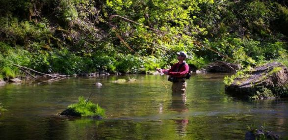 campsites with Fishing