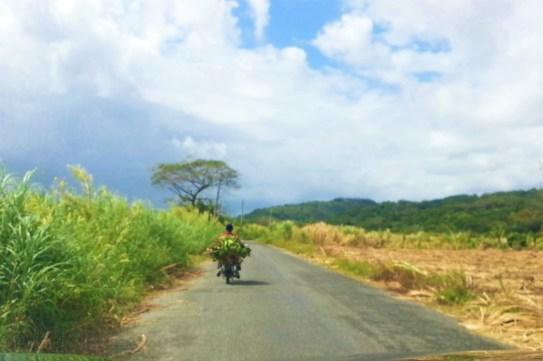 Menschen Jamaika