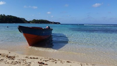 Local Beach Jamaica