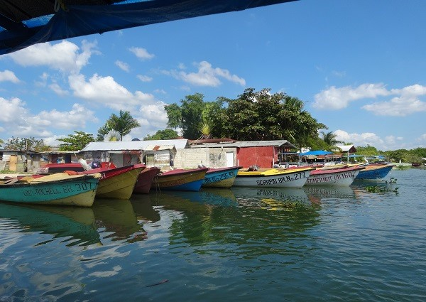 Black River Safari Jamaika