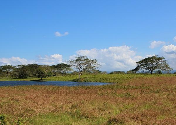 Landschaft bei Bounty Hill Jamaika