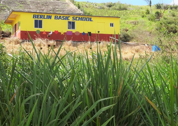Jamaika Tour im Mietwagen
