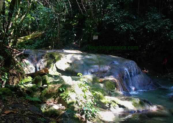 Wasserfall Westmoreland Jamaika