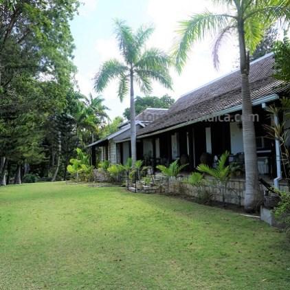 Versteckt zwischen Bäumen - das Cinnamon Hill Greathouse auf Jamaika