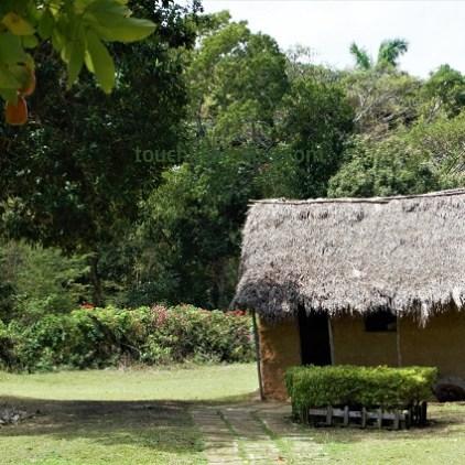 Aus Holz, Lehm und Stroh - einfache Sklavenhütte auf Jamaika.