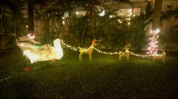 Christmas Riu Mobay