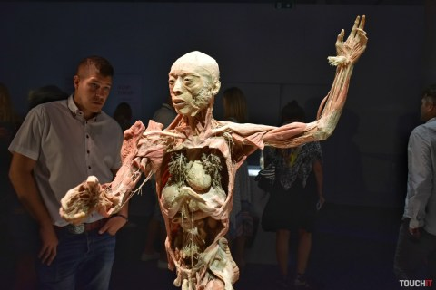 body_the_exhibition (10)