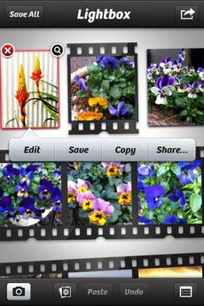 app_photo_cameraplus_16.jpg