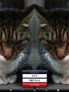 app_photo_symmetry2_11.jpg