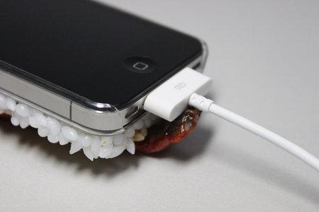 eel_iphone_case_6.jpg