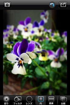 app_photo_big_lens_7.jpg