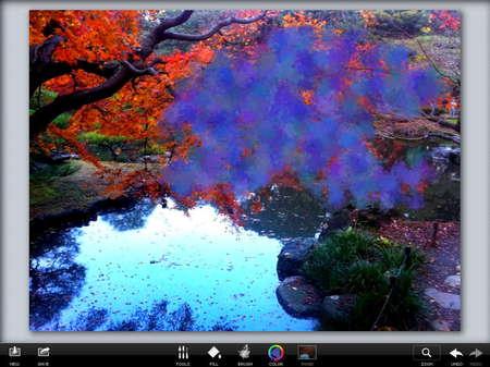 app_photo_photoviva_10.jpg