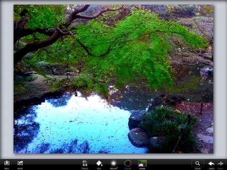 app_photo_photoviva_12.jpg