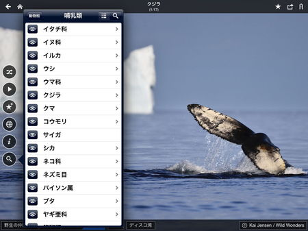 app_travel_fotopedia_wild_friends_6.jpg
