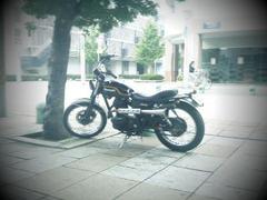 app_photo_toydigi1.jpg