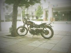 app_photo_toydigi2.jpg