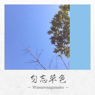 app_photo_kyotocamera_7.jpg