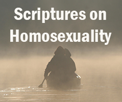 Word of God Says about Homosexuality