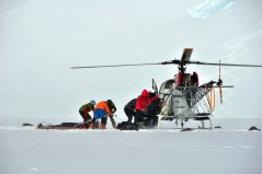 "10. Jeff and other Rangers performing a rescue on the ""Denali Lama."""