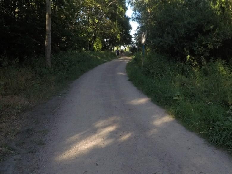 Steelman Run, Strecke durch den Wald