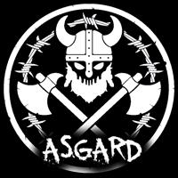 Logo Ultimate Vikings Race Asgard