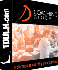 Curso Diplomado en coaching organizacional