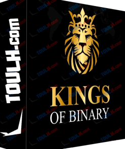 Kings of binary Curso Completo