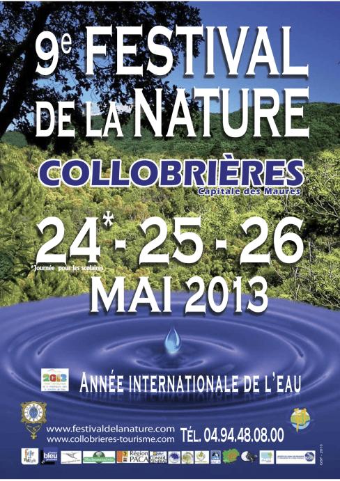 Affiche festival nature web