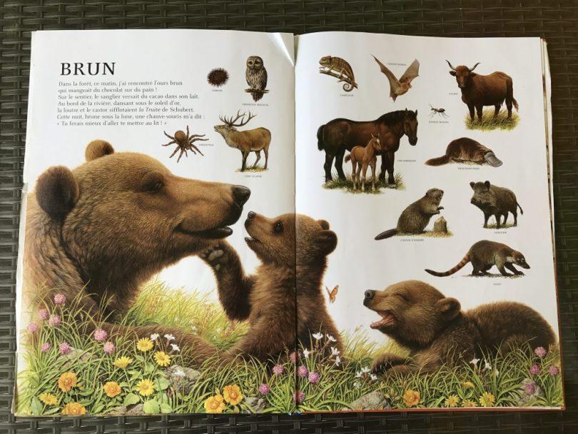 l'imagier des animaux de André Boos - BRUN