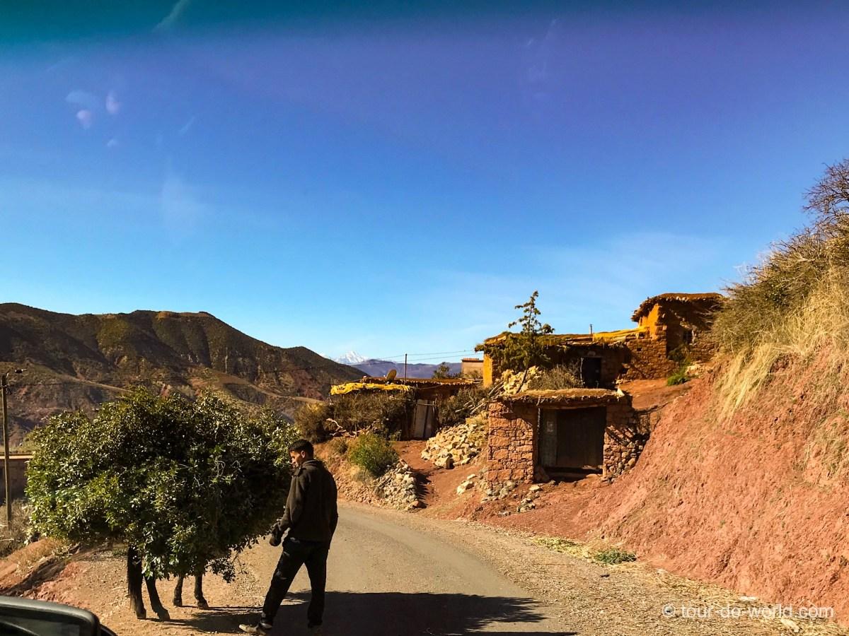 Marokko_Gebirge_Esel