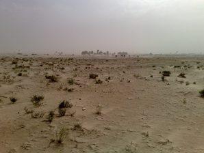 Desert tunisien