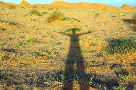ombre-desert