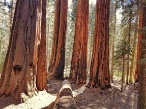roadtrip en californie