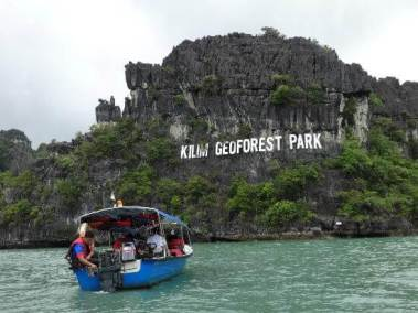 mangrove-tour-2