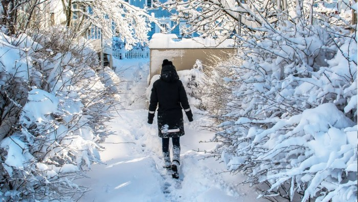 HOW ICELAND DEALT WITH THE BIGGEST SNOWSTORM IN REYKJAVIK IN OVER 100 YEARS!