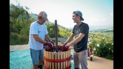 MAKING WINE IN ITALY!