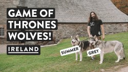 WE MET THE DIREWOLVES! +Grave Of St Patrick | Northern Ireland | GOT & St Pats Vlog